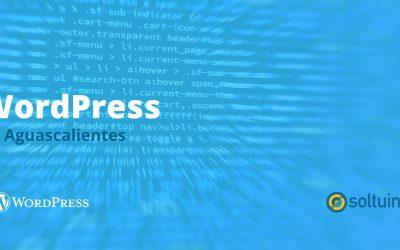 Tu asesor personal de WordPress en Aguascalientes